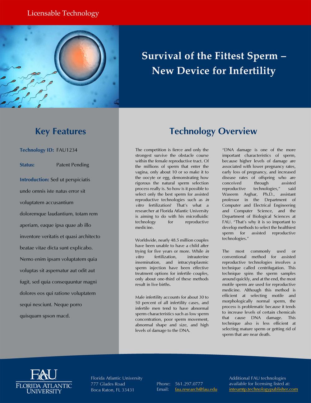 Technology Marketing Brochure